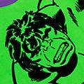 Disney Store - Hulk - T-Shirt für Kinder