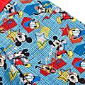 Disney Store Mickey and Friends Swimming Trunks For Kids