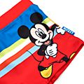 Disney Store Mickey and Friends Swimming Shorts For Kids