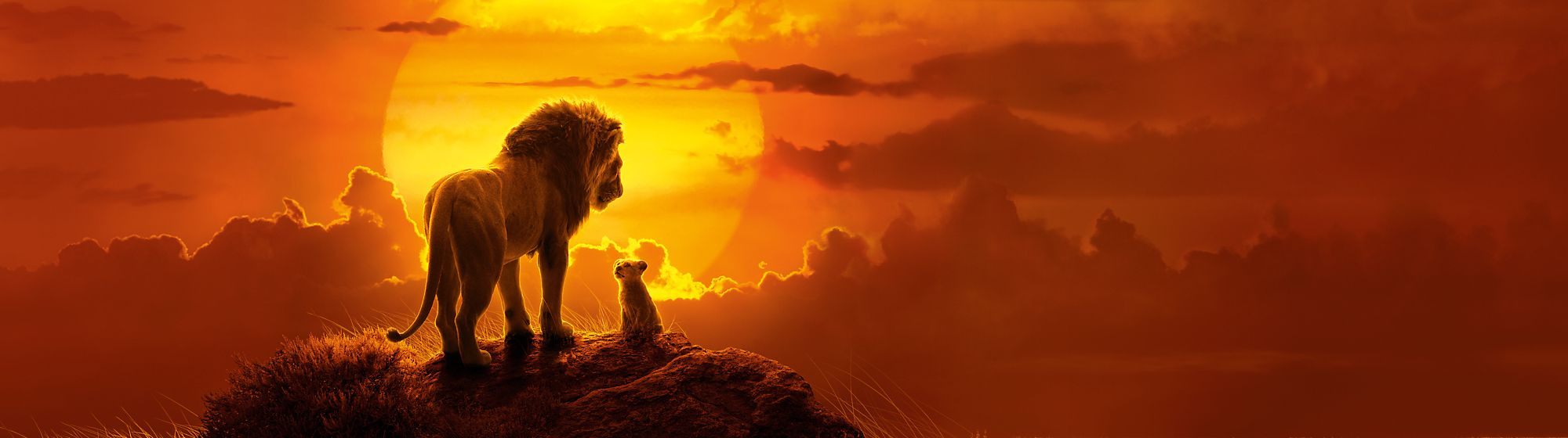 The Lion King Explore our The Lion King range including soft toys, playsets, homeware, collectibles and more