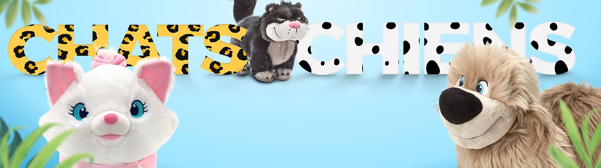 Chats et Chiens Amuse-toi avec notre collection câline de chats et de chiens