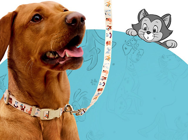 Cute Canine Collection Embark on paw-some adventures with our collection SHOP NOW