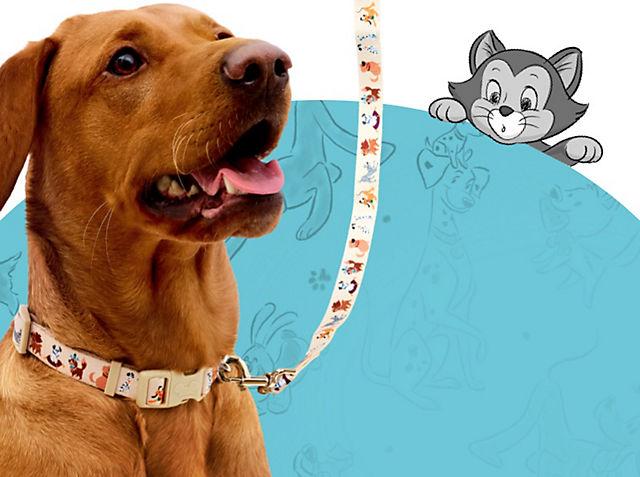 Una tenera collezione per cani Una collezione perfetta per avventure a quattro zampe ACQUISTA ORA