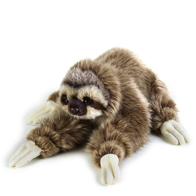Disney Store National Geographic Sloth Medium Soft Toy