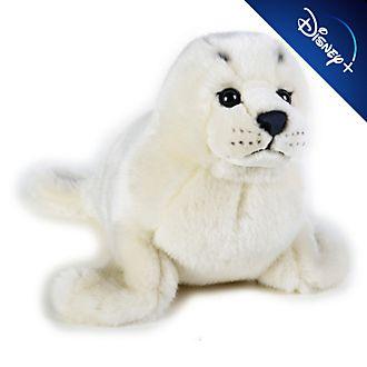 Disney Store - National Geographic - Seehund - Kuscheltier