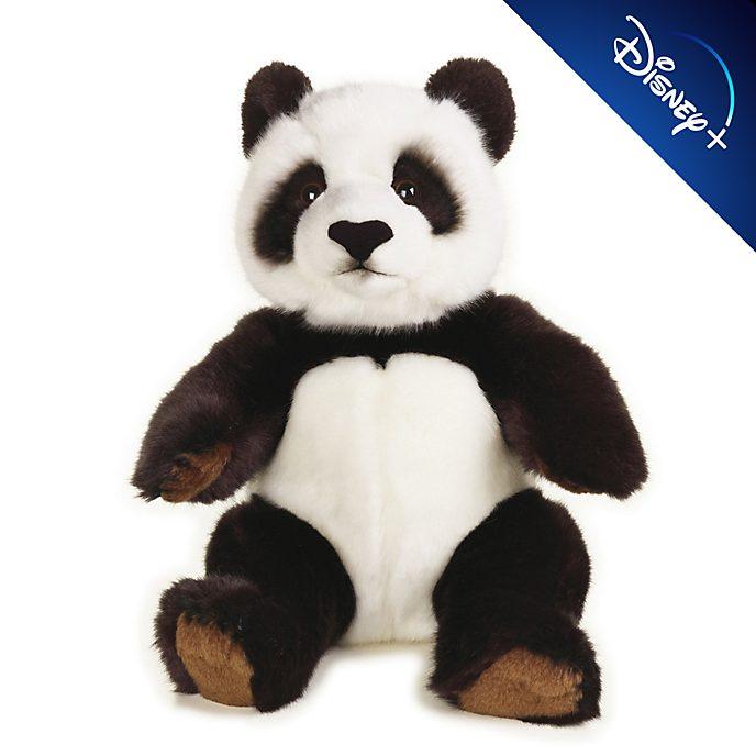 Peluche medio Panda National Geographic Steiff