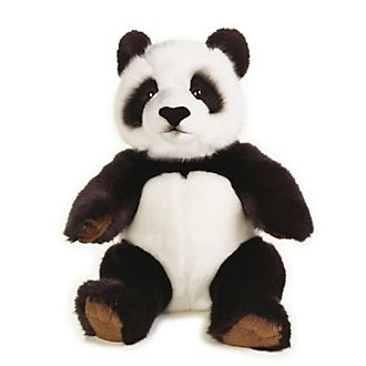 Disney Store National Geographic Panda Medium Soft Toy