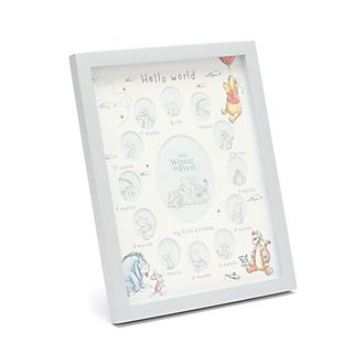 Disney Store Winnie the Pooh and Friends My First Year Photo Frame
