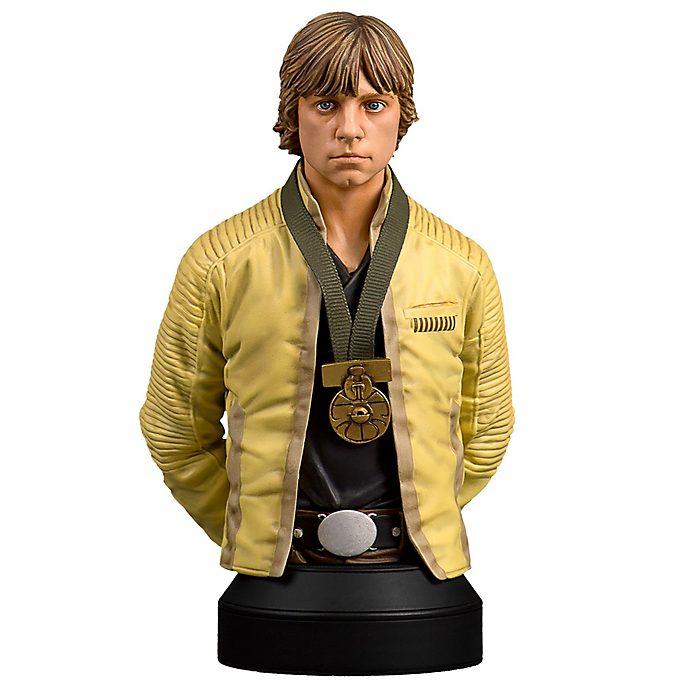Gentle Giant - Luke Skywalker - Miniaturbüste