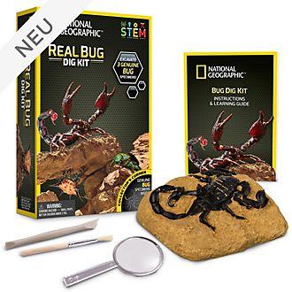 Bandai - National Geographic - Ausgrabungsset - Insekten zum Ausgraben