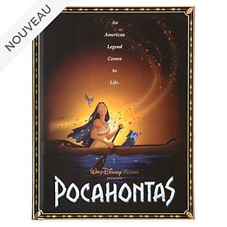 Disney Store Journal Affiche de Pocahontas