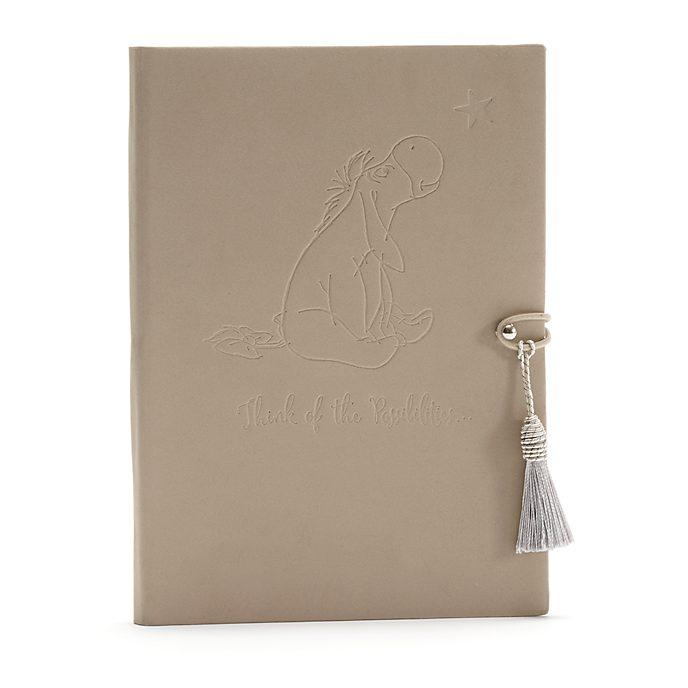 Disney Store Journal Bourriquet