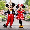 Walt Disney World 14-Day Unlimited Ticket For Kids