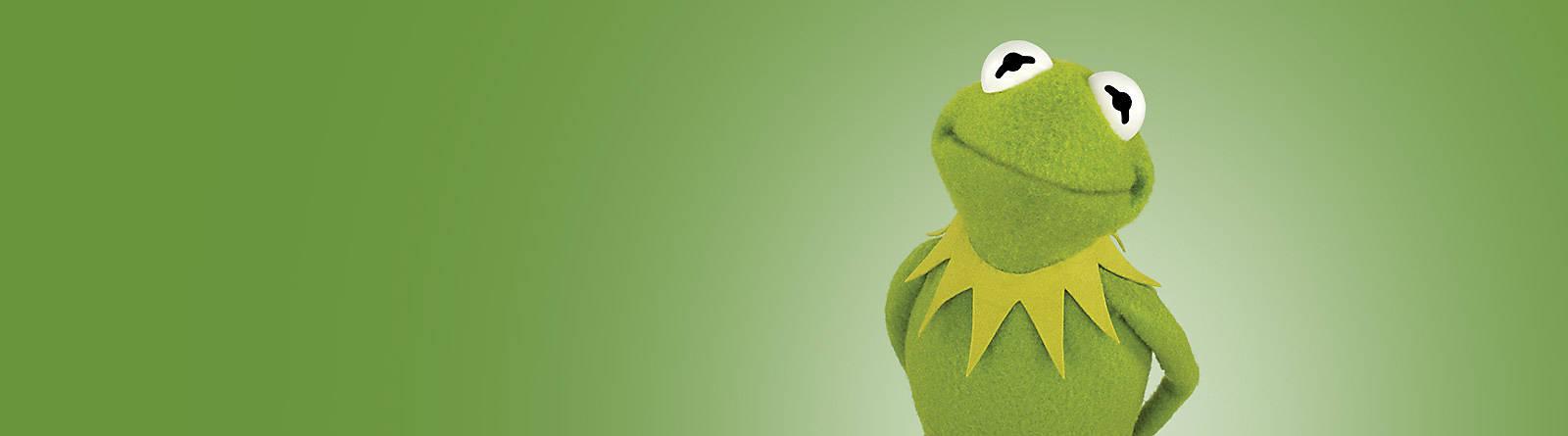 I Muppets Scopri tutta la nostra linea più sensazionale, celebrativa, divertente: quella dedicata  agli indimenticabili Muppets, vieni a dare un'occhiata