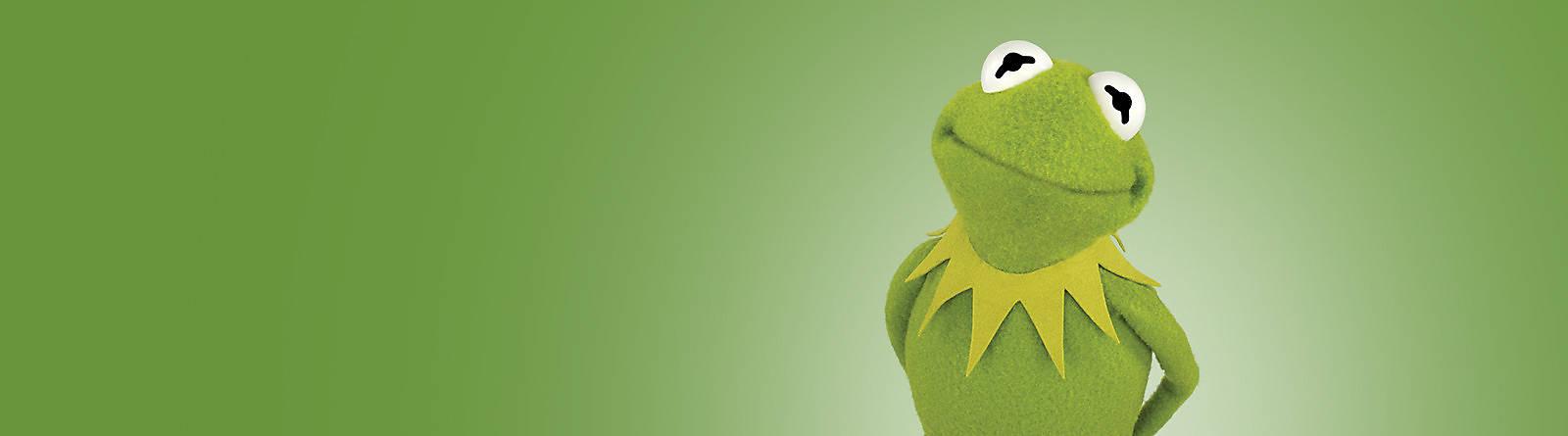 I Muppets Che mondo sarebbe senza i simpaticissimi Muppets? Scopri tutta la nostra più sensazionale, celebrativa, divertente gamma di prodotti e articoli legati ai personaggi dei Muppets